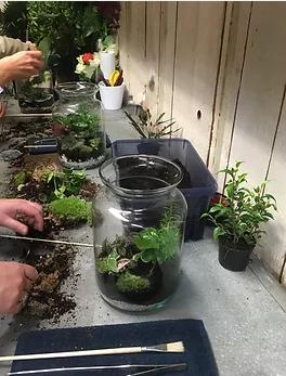 terrarium creation vegetale escapade artisanale