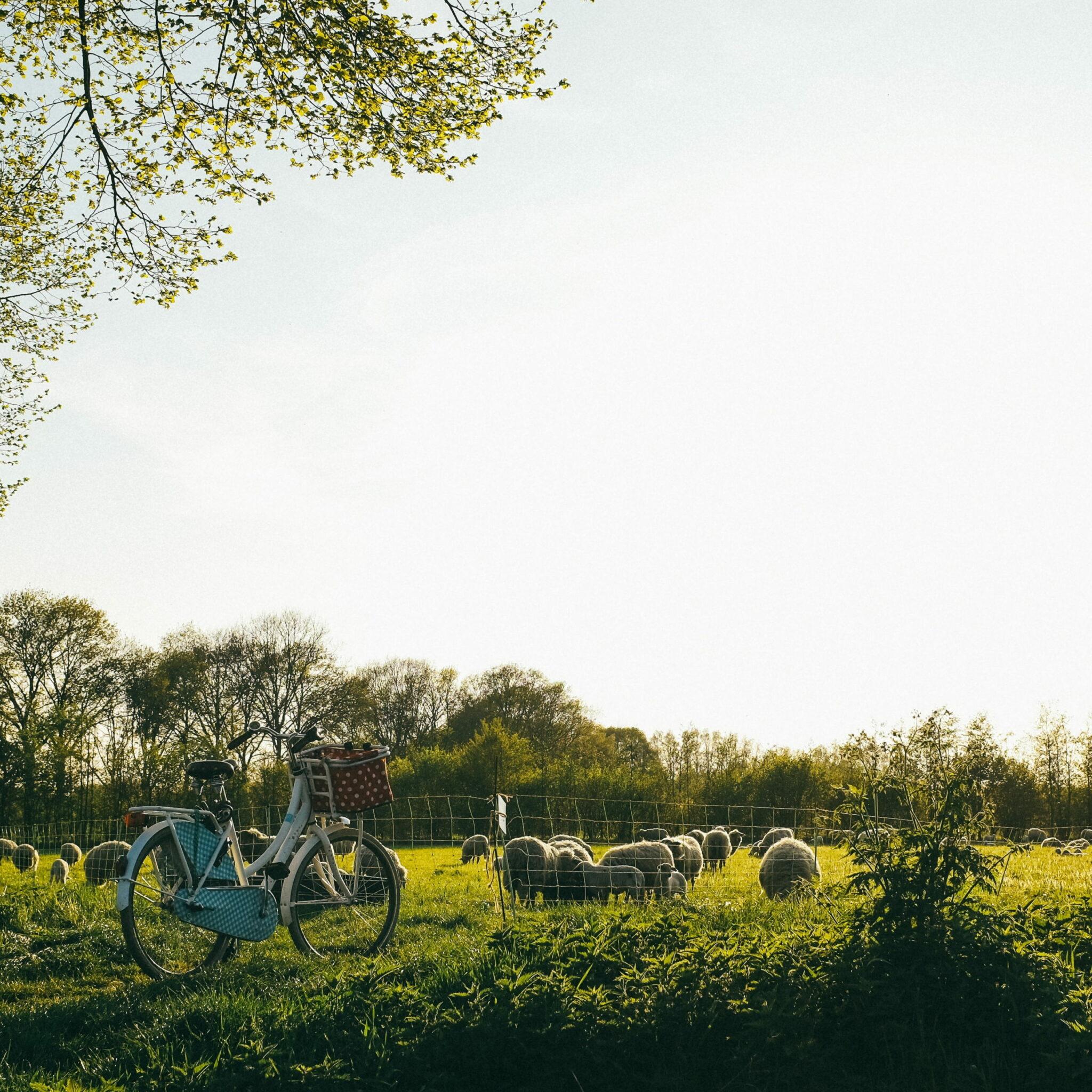 Escapade artisanale APortée2Mains accés en vélo