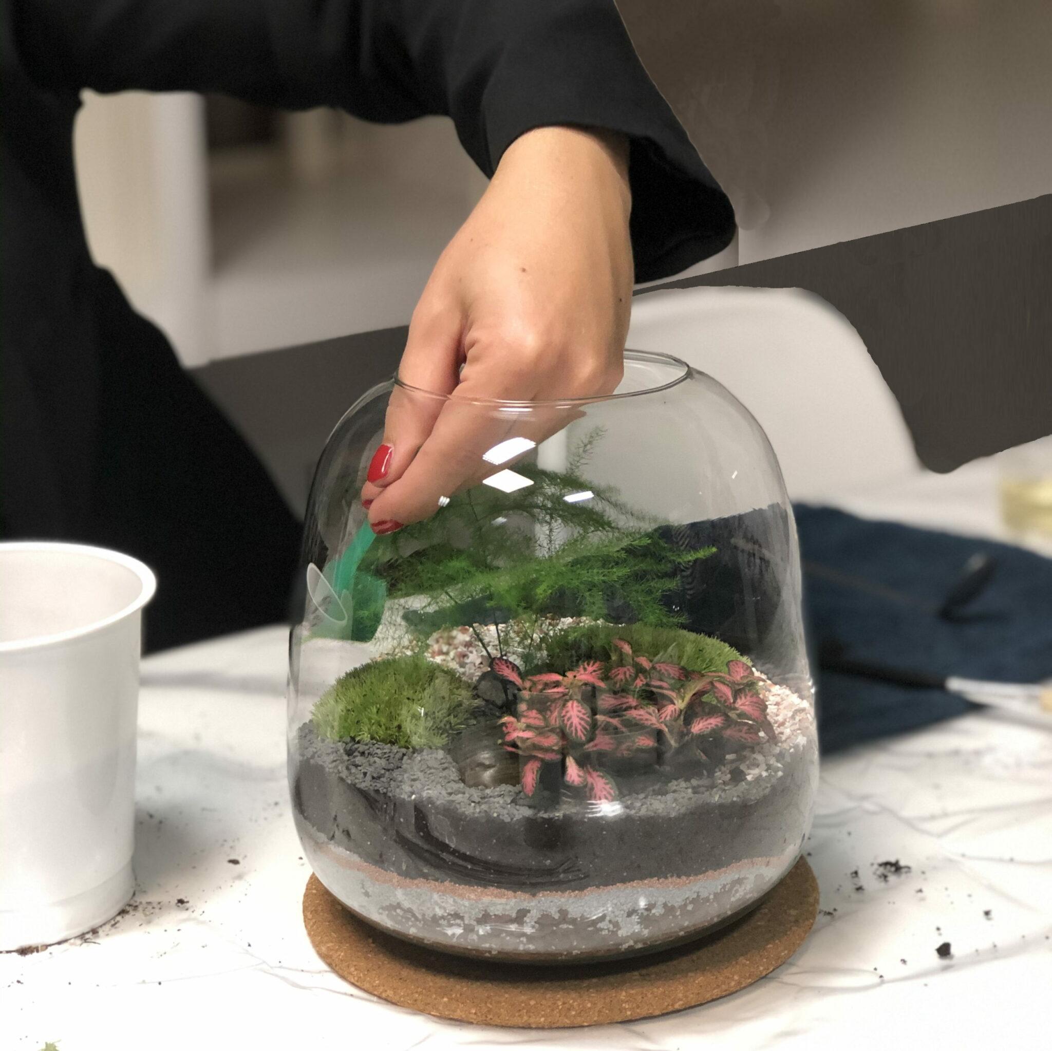 création terrarium à la main